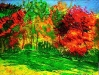 autumntrees07