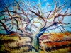 winter_apple_tree